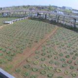 その他、植物関連のライブカメラ