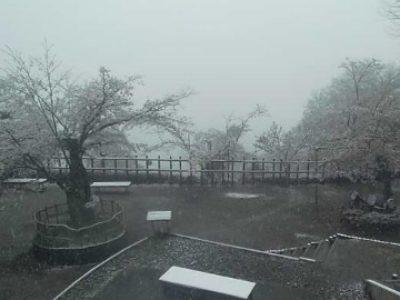 大月市のライブカメラ 積雪状況