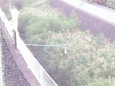 帷子川など神奈川県の二級河川・ライブカメラ