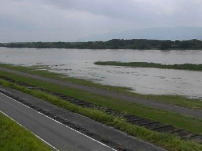 長良川と支流のライブカメラ