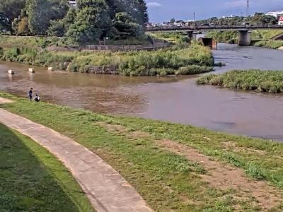 新河岸川のライブカメラ