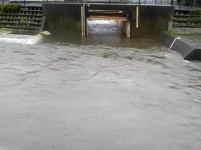 野川のライブカメラ